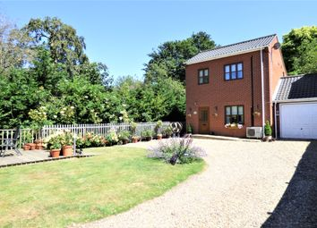 Thumbnail 3 bed link-detached house for sale in Norwich Road, Long Stratton, Norwich