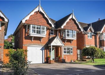 Thumbnail Detached house for sale in Royal Close, Orpington, Kent