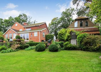 Thumbnail 4 bed semi-detached house for sale in Woodbine Lane, Burghclere, Newbury
