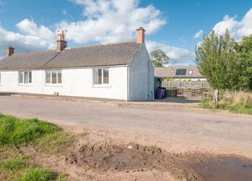 Thumbnail 2 bedroom semi-detached house to rent in Montrose