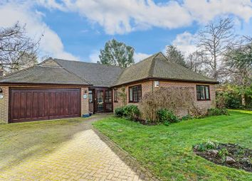 Thumbnail 3 bed detached bungalow for sale in Lovelock Close, Kenley