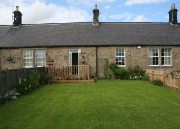 Thumbnail 3 bed cottage for sale in Netherton, Morpeth