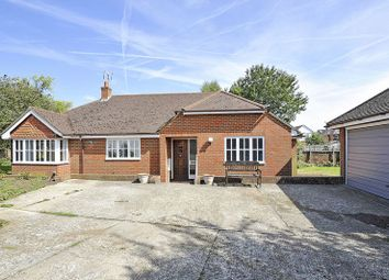 Thumbnail 3 bed detached bungalow to rent in Hare Lane, Godalming
