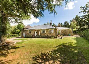 Thumbnail 4 bed bungalow for sale in High Mill Road, Hamsterley Mill, Rowlands Gill