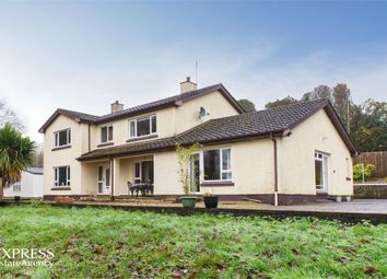 Thumbnail 6 bed detached house for sale in Arney Road, Skea, Arney, Enniskillen, County Fermanagh