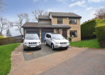 Thumbnail 4 bedroom detached house for sale in Loughbrow Park, Hexham
