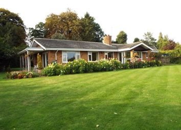 Thumbnail 4 bed bungalow for sale in Palgrave, Diss, Suffolk