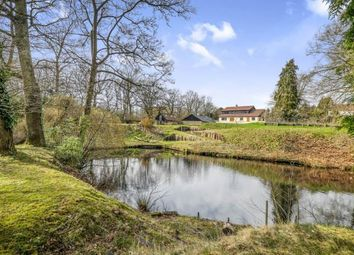 Thumbnail 5 bedroom equestrian property for sale in Broome, Bungay, Norfolk