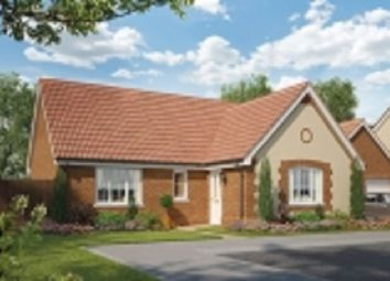 Thumbnail 2 bedroom detached bungalow for sale in Nursery Lane, South Wootton, Norfolk