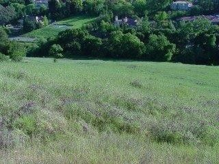 Thumbnail Land for sale in 0 Mt Eden Rd, Saratoga, Ca, 95070