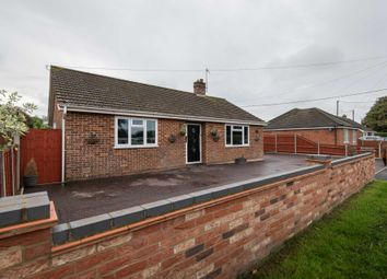 Thumbnail 4 bed detached bungalow for sale in Ivy Road, Spixworth, Norwich