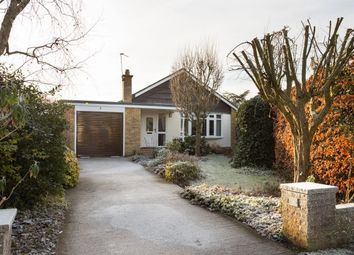 Thumbnail 3 bed bungalow for sale in Mulberry Court, Huntington, York