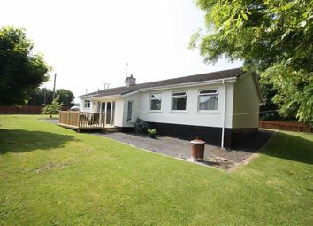 Thumbnail 3 bed detached bungalow for sale in Magheratimpany Road, Ballynahinch, Down