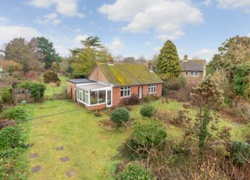 Thumbnail 3 bed detached bungalow for sale in Chilham, Nr Canterbury