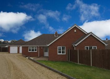 Thumbnail 4 bed detached bungalow to rent in Hilda Brookes Way, New Costessey, Norwich