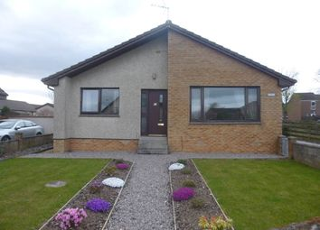 Thumbnail 3 bed bungalow to rent in Mackenzie Gardens, Brechin
