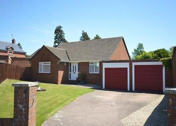 Thumbnail 2 bed bungalow to rent in Leighdene Close, St. Leonards, Exeter