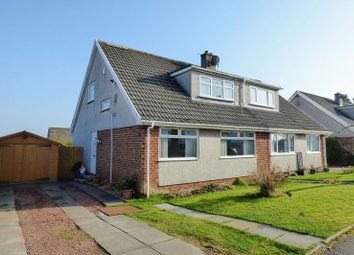 Thumbnail 4 bed semi-detached house for sale in Larkspur Way, Carluke