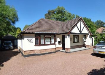 Thumbnail 4 bed bungalow for sale in St. Leonards, Ringwood, Dorset