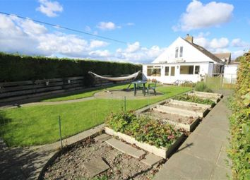 Thumbnail 4 bed detached bungalow for sale in Norris Close, Chiseldon, Wiltshire