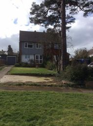 Thumbnail 4 bed semi-detached house to rent in Downhall Close, Rayleigh