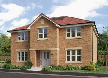 """Thumbnail 5 bed detached house for sale in """"Hopkirk"""" at Brora Crescent, Hamilton"""