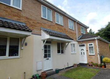 Thumbnail 2 bed terraced house to rent in Bishop Pelham Court, Keswick Hall, Norwich