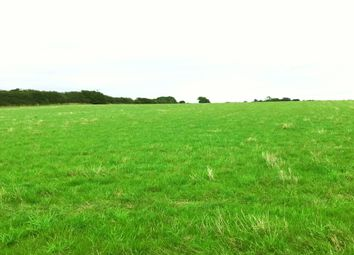 Thumbnail Farm for sale in Cheapside, Waltham, Grimsby