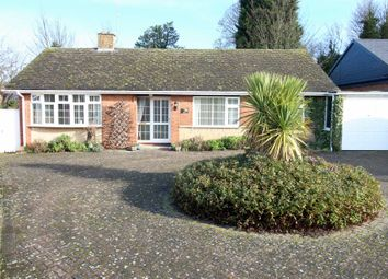 Thumbnail 3 bed detached bungalow for sale in Chestnut Close, Worksop