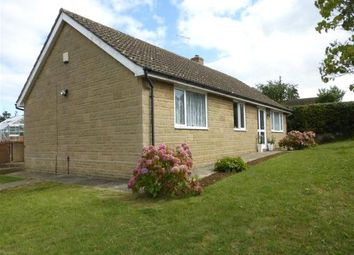 Thumbnail 3 bed bungalow to rent in Ridgway, West Chinnock, Crewkerne, Somerset