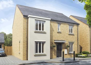 Thumbnail 4 bed detached house for sale in Holbrook Grove, Biggleswade