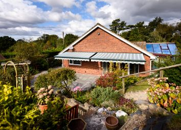 Thumbnail 3 bedroom detached bungalow for sale in Church Hill, Beccles Road, Haddiscoe, Norwich