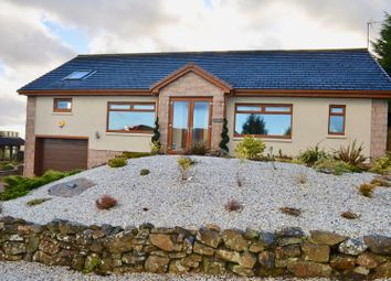 Thumbnail 4 bed detached bungalow for sale in East Forth Road, Lanark