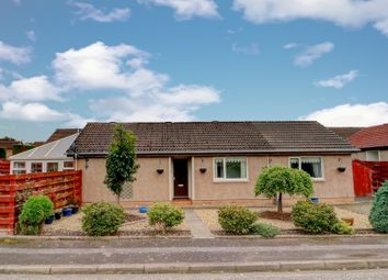 Thumbnail 4 bed bungalow for sale in Holly Crescent, Dumfries