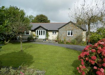 Thumbnail 4 bed detached bungalow for sale in Clynderwen