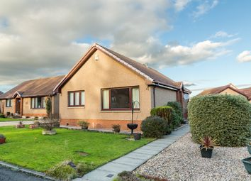 Thumbnail 2 bed detached bungalow for sale in Dunnottar Place, Kirkcaldy