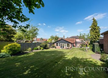 Thumbnail 5 bed link-detached house for sale in The Street, Rickinghall, Diss