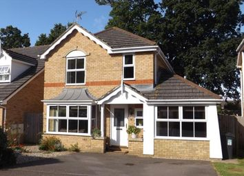Thumbnail 4 bed detached house for sale in The Spinney, Tonbridge