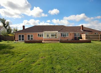 Thumbnail 4 bed semi-detached bungalow to rent in Burgess Drove, Waterbeach, Cambridge