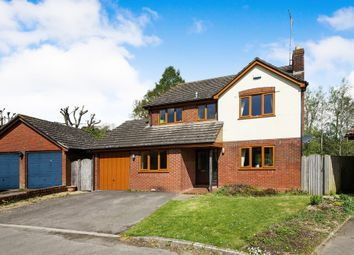 Thumbnail 4 bed detached house for sale in Hylands, Buckland Newton, Dorchester
