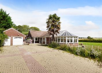 Thumbnail 4 bed detached bungalow for sale in Westergate Street, Woodgate, Chichester