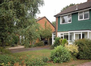 Thumbnail 3 bed semi-detached house for sale in Hillcrest, Brewood, Stafford