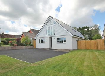 Thumbnail 3 bed detached house for sale in Butchers Lane, Three Oaks, East Sussex