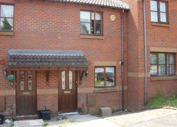 Thumbnail 2 bed terraced house for sale in Abelia Close, Paignton