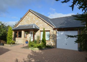 Thumbnail 4 bed detached bungalow for sale in Branxton, Cornhill-On-Tweed