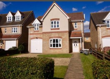 Thumbnail 4 bed detached house to rent in Wignals Gate, Holbeach, Spalding