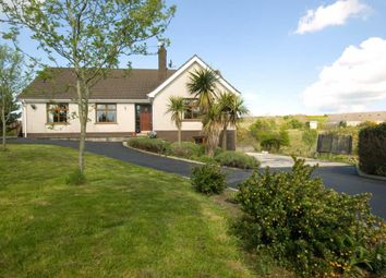 Thumbnail 4 bed detached house for sale in Magheralone Road, Ballynahinch