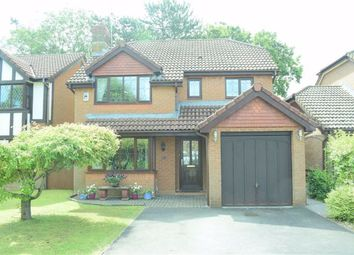 Thumbnail 4 bed detached house for sale in Dysgwylfa, Sketty, Swansea