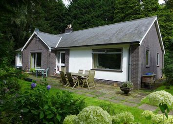 Thumbnail 3 bed bungalow for sale in Machynlleth, Powys