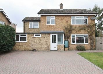 Thumbnail 5 bedroom detached house for sale in Clifton Wood, Holbrook, Ipswich